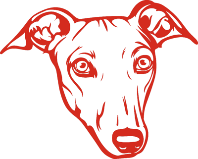 grehound face outline