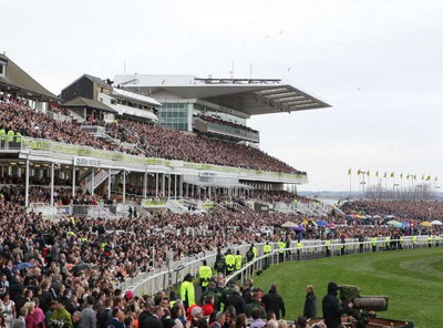 crowd and stands at the grand national