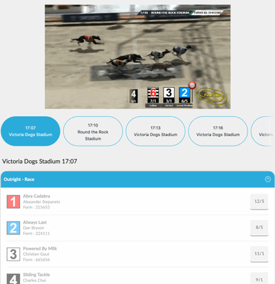 virtual greyhound race