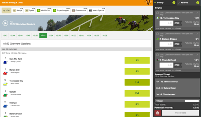 virtual racing console and bet slip
